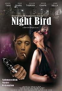 Primary photo for Night Bird