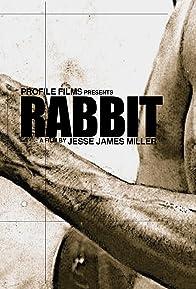 Primary photo for Rabbit