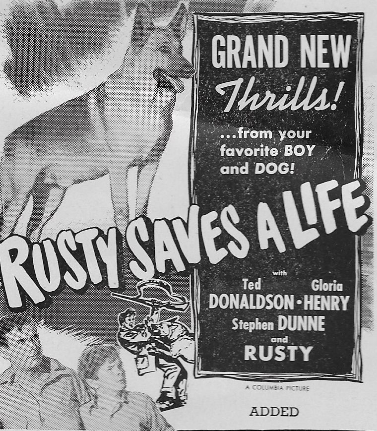 Ted Donaldson, Stephen Dunne, and Flame in Rusty Saves a Life (1949)