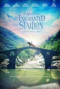 Primary photo for Albion: The Enchanted Stallion