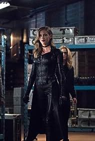 Katie Cassidy, Caity Lotz, Juliana Harkavy, and Emily Bett Rickards in Arrow (2012)