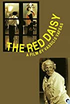The Red Daisy