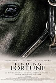 Finding Fortune Poster