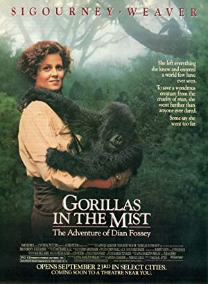 Gorillas in the Mist Poster Image