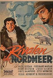 Nordlicht Poster