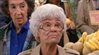 The Days and Nights of Sophia Petrillo
