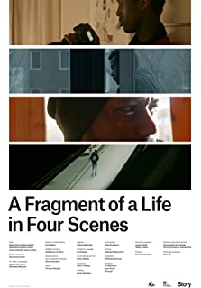 A Fragment of a Life in Our Scenes (2016)