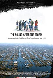 The Sound After the Storm Poster