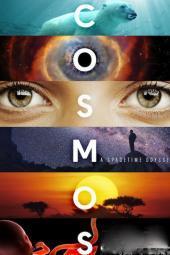 Kosmos / Cosmos: A Spacetime Odyssey (2014) Lektor PL.720p.HDTV.x264