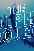 Swimming With Wild Dolphins in 360° Virtual Reality: The Dolphin Project
