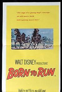 Primary photo for Born to Run