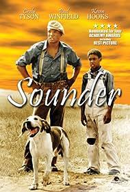 Sounder (1973) Poster - Movie Forum, Cast, Reviews