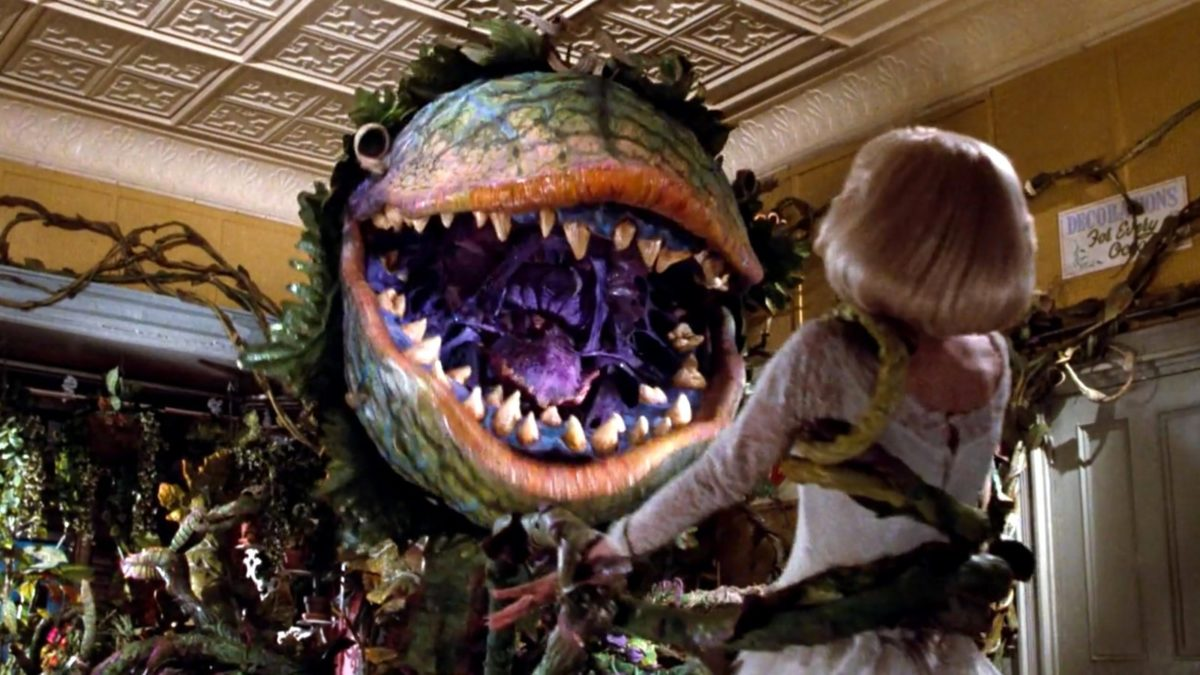 Little Shop Of Horrors 1986 Photo Gallery Imdb