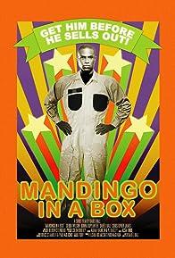 Primary photo for Mandingo in a Box