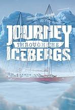 Journey Through the Icebergs