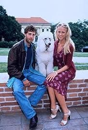 Doggy Dog - Eine total verrückte Hundeentführung Poster