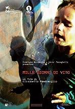 Mille giorni di Vito