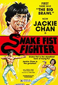 Primary photo for Snake Fist Fighter