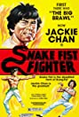 Snake Fist Fighter