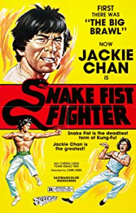 Snake Fist Fighter download