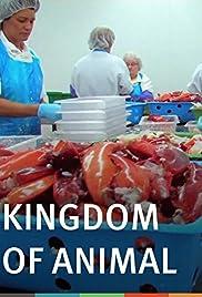 Kingdom of Animal Poster