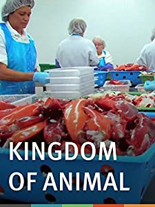 English movies released in 2016 free download Kingdom of Animal USA [mp4]