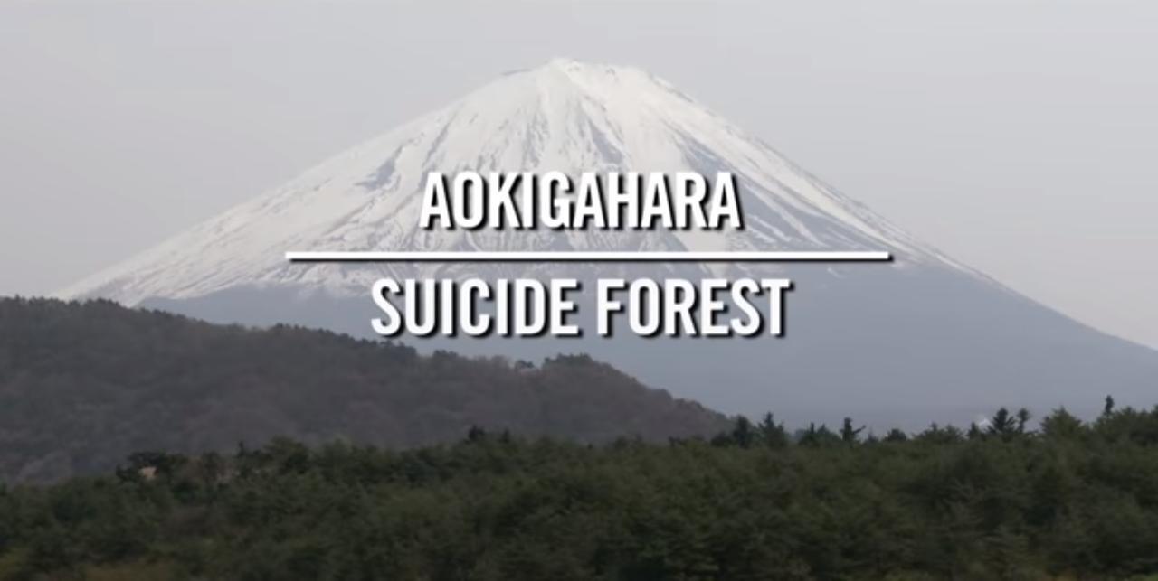 دانلود زیرنویس فارسی فیلم Aokigahara: Suicide Forest