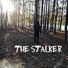 The Stalker (2020)