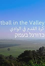 Football in the Valley Poster