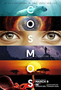Primary photo for Cosmos: A Spacetime Odyssey