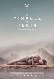 Miracolul din Tekir Poster