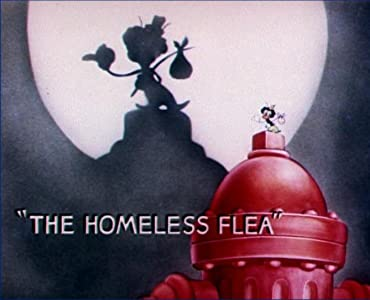 HD movie videos download The Homeless Flea [480x640]