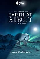 Earth at Night in Color