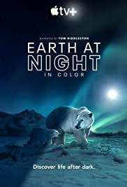 Earth at Night in Color Poster