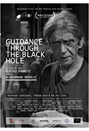 Guidance through the Black Hole
