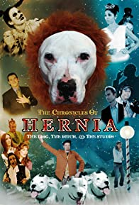 Primary photo for The Chronicles of Hernia: The Lion, the Ditch and the Studio