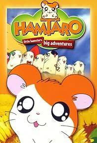 Primary photo for Hamtaro