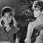 Tina Louise and Dawn Wells in Gilligan's Island (1964)