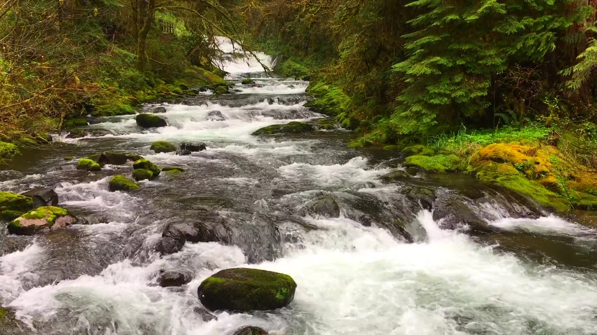 indianas maurice creek makes - HD1920×1080