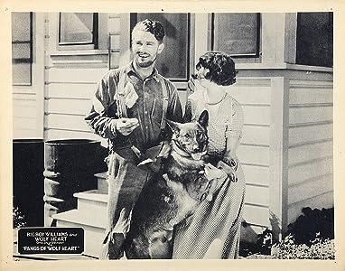Descargas de películas HD de 720p Fangs of Wolfheart, Wolfheart the Dog, Guinn 'Big Boy' Williams, Kathleen Collins [480x360] [1280p] [720x320] USA (1925)