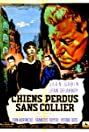 The Little Rebels (1955) Poster