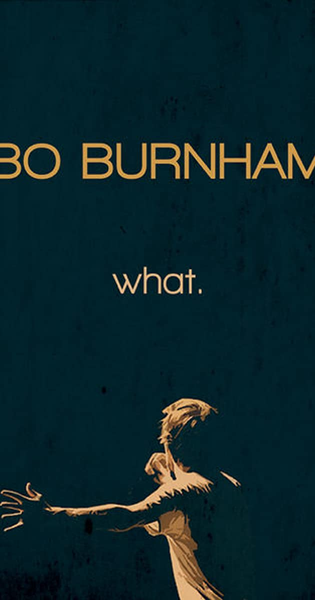 Subtitle of Bo Burnham: what.