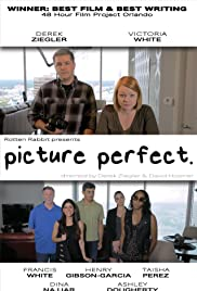 Picture Perfect Poster