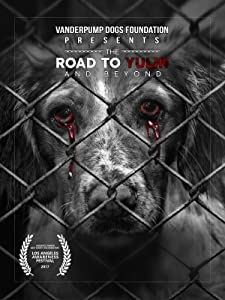 the road full movie free download
