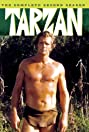 Tarzan (1966) Poster