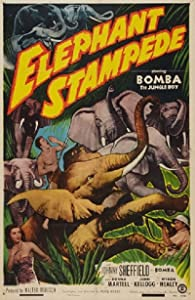 Elephant Stampede movie free download in hindi