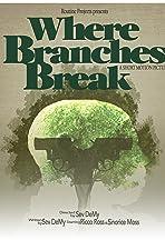 Where Branches Break