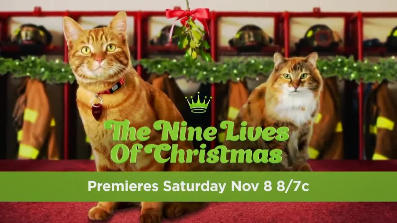 The Nine Lives of Christmas (TV Movie 2014) - IMDb