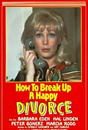 How to Break Up a Happy Divorce Poster