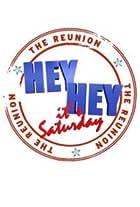 Hey Hey it's Saturday: The Reunion